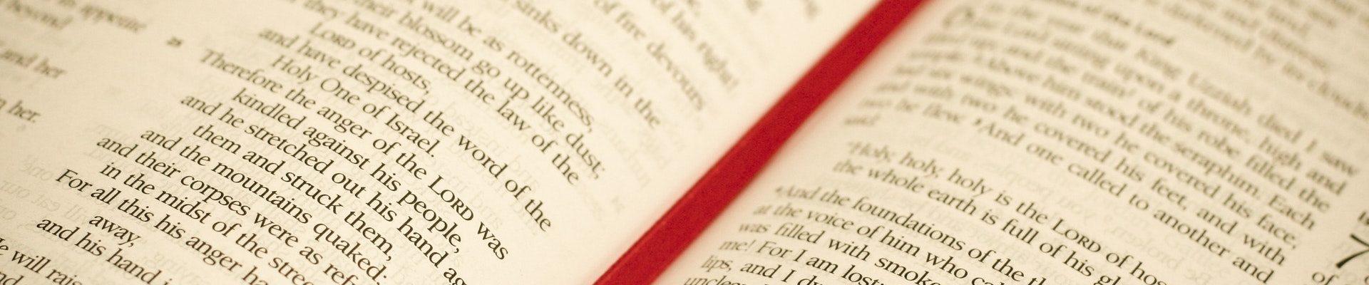 De Bijbel voor iedereen
